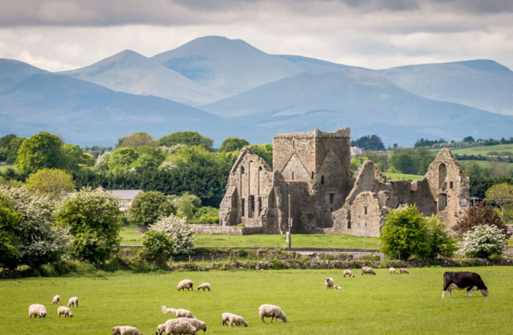 Experience the Magic of Cultural Ireland