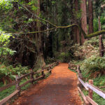 3 Tips For Picking A Hotel For A San Francisco Hiking Trip